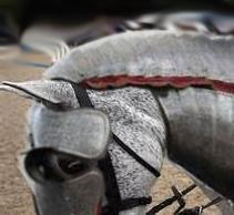Flea Bitten Horse with Armor